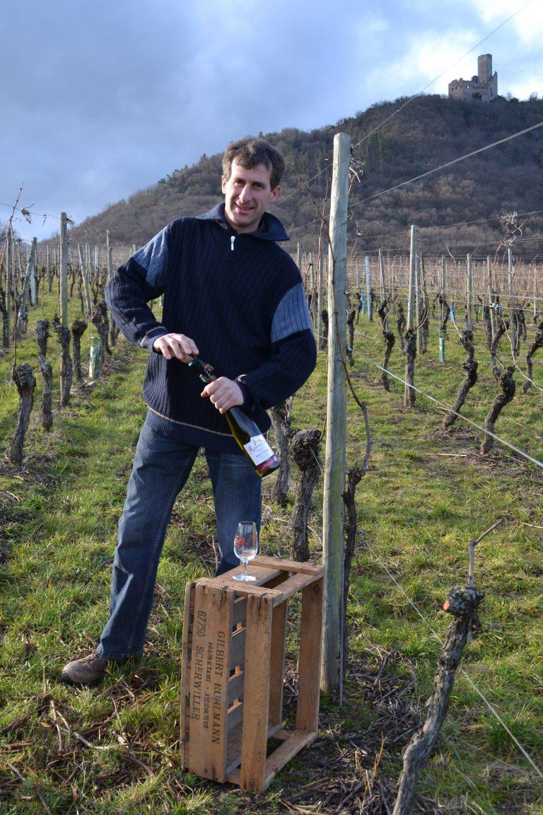 Ruhlmann vin vigne